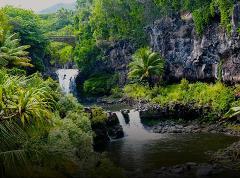 Shaka Guide Classic Road to Hana Driving Tour