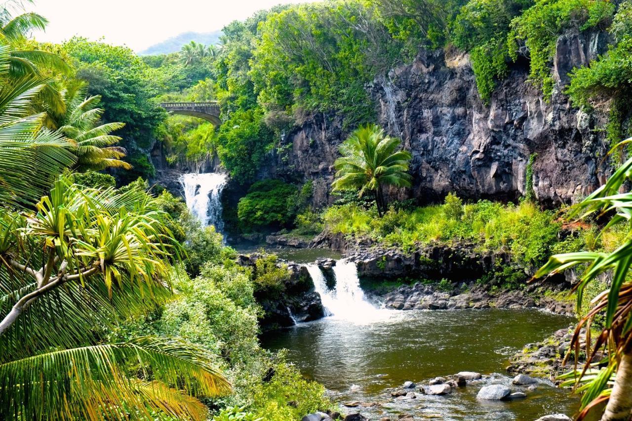 Shaka Guide Maui Loop Road to Hana Driving Tour