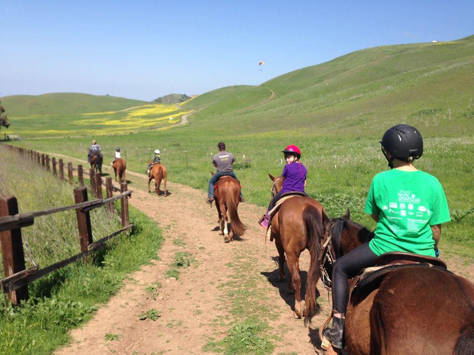 60 Minute Trail Ride - Ed Levin Park