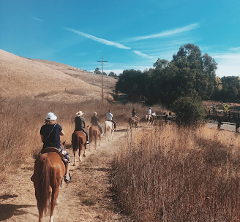 30 Minute Trail Ride - Ed Levin Park