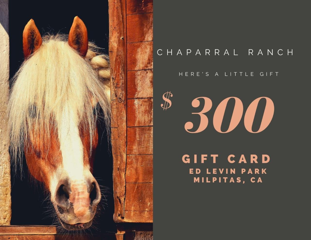 $300 Gift Card - Ed Levin Park