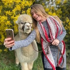 Alpaca Interactive Tour