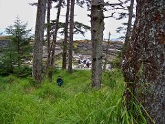 Volcanic Coastline Hike