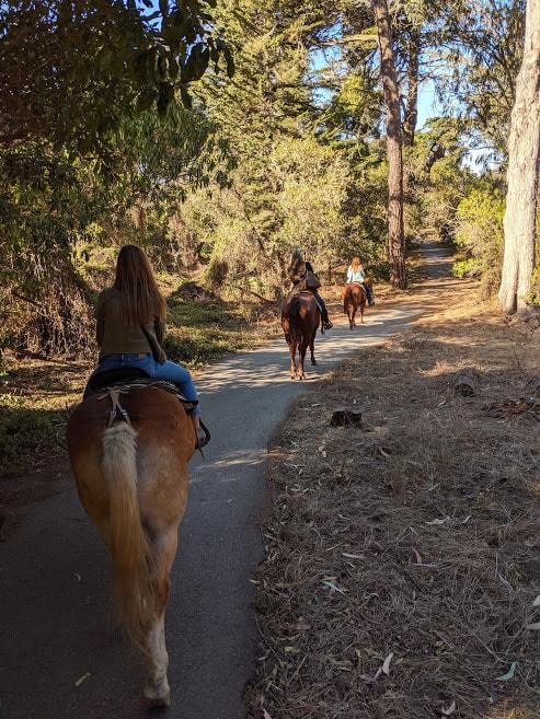 30 Minute Trail Ride - Golden Gate Park