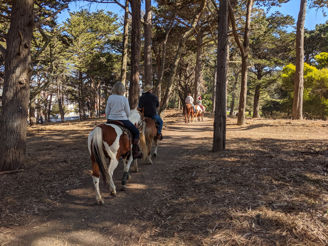 45 Minute Trail Ride - Golden Gate Park
