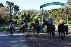 60 Minute Beginner Western Group Lesson - Golden Gate Park