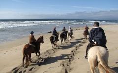 90 Minute Beach Ride - Ocean Beach - San Francisco