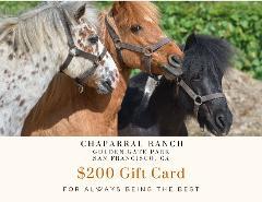 $200 Gift Card - Golden Gate Park