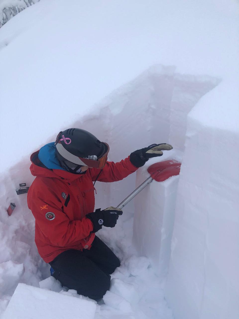 Avalanche Skills Training (AST) 1 Plus