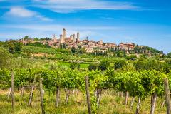 Tuscany in a Day: Pisa, Siena, San Gimignano with Lunch and Wine Tasting