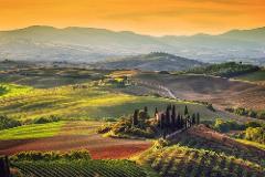 Val d'Orcia day tour: Montalcino's Brunello, Montepulciano's Nobile wine and Pienza with Pecorino cheese