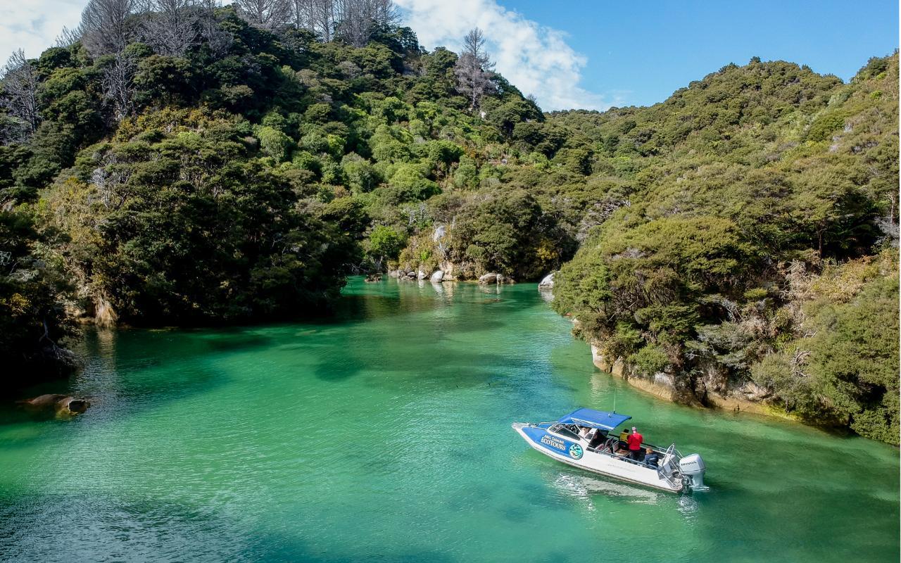 Golden Future Eco Boat Tour