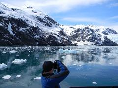 Prince William Sound Glacier & Wildlife Cruise
