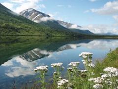 Anchorage to Seward Private Cruise Transfer Tour