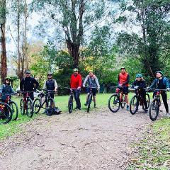 Half-Day Redwood Forest Mountain Bike Adventure