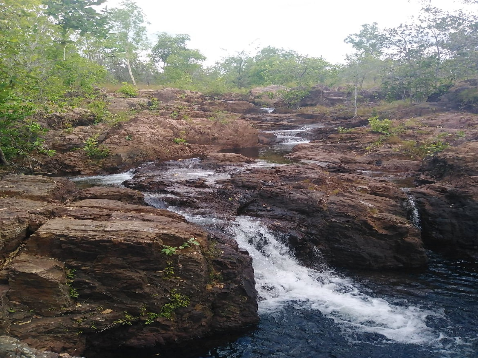 Private Guided One Day Litchfield Park Adventures Tour