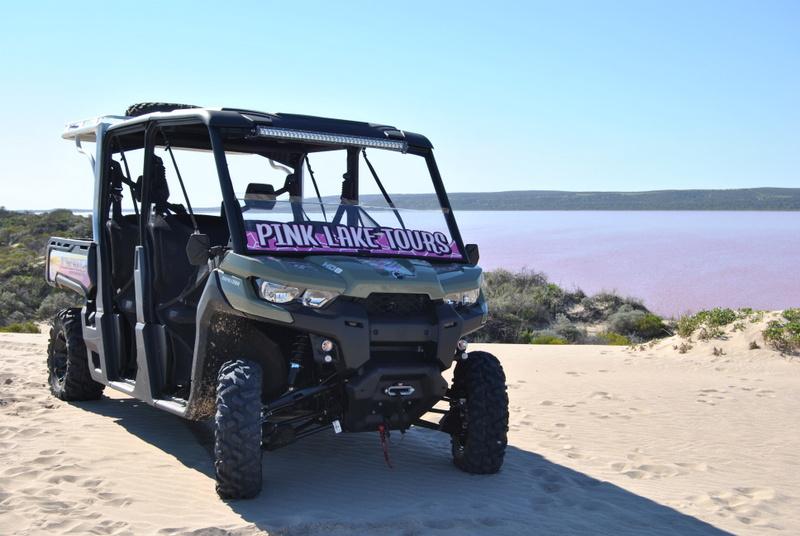 Pink Lake Buggy Tour