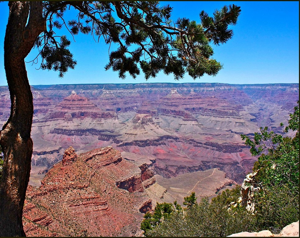Grand Canyon South Rim Tour by Jeep