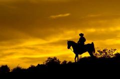 The Wild Wild West Sunset Dinner - Horseback Ride