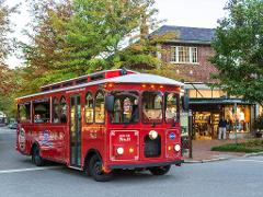 Hop-On/Hop-Off Trolley Tour of Asheville