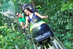 Jamaica Bobsled and Zipline Adventure Tour from Kingston