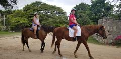 Braco Stables Horseback Ride and Swim Excursion from Kingston