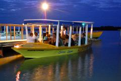 Luminous Lagoon Tour from Montego Bay