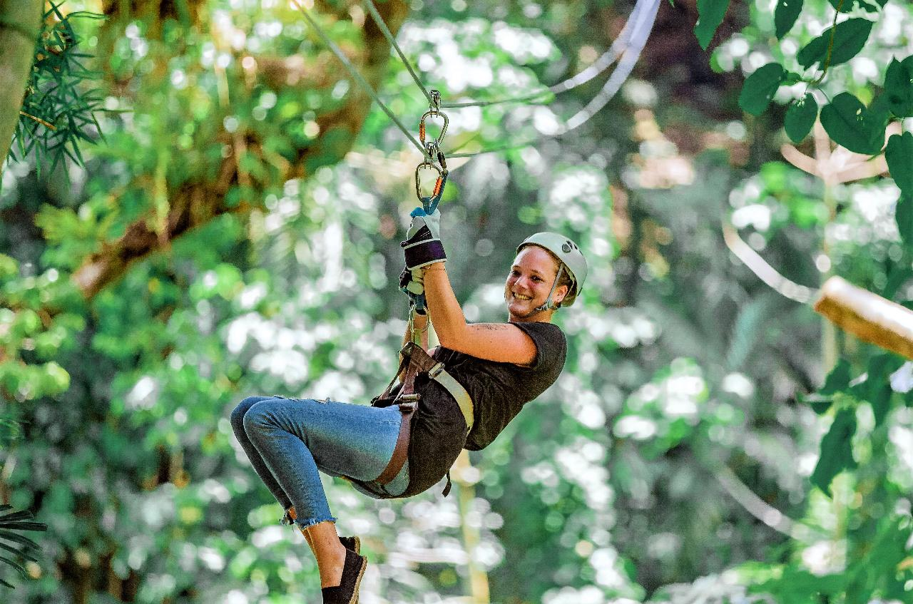 Jamaica Tag-along Adventure  - Dunn's River Falls, Zipline, Snorkeling and Lunch from Kingston (Jamaicans W/ID)