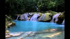 Blue Hole River Gully Rain Forest Adventure Tour from Negril