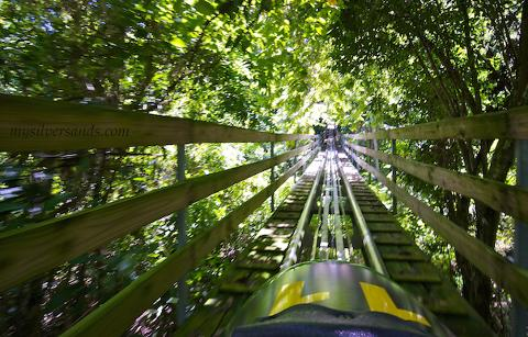 Mystic Mountain Jamaica Bobsled from Kingston