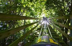 Mystic Mountain Jamaica Bobsled from Montego Bay