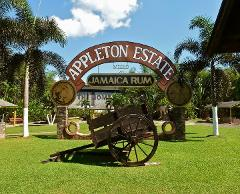 Appleton Estate Rum Tour from Negril (Attraction Closed for Renovations)