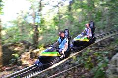Jamaica Bob Sled, Blue Hole & Bob Marley Nine Miles, 3 Tours from Ocho Rios