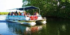 Black River Safari Tour  and YS Falls Tour from Negril