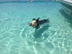 Exuma Escapes Swimming Pigs Tour from Nassau