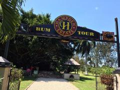 Hampden Estate Rum Tour and Lunch from Montego Bay