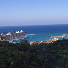 Ocho Rios Sightseeing and Fern Gully Tour from Montego Bay