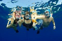 Reef Snorkelling Adventure Tour from Ocho Rios