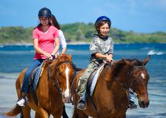 Horseback Ride n Swim and Green Grotto Adventure Tour from Falmouth