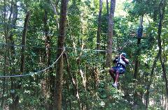 Canopy Zipline & Dunn's River Falls Adventure Tour from Runaway Bay