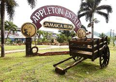 Appleton Estate Rum Tour from Runaway Bay