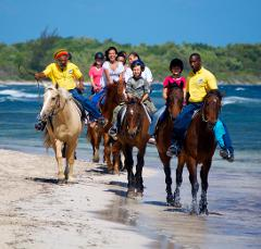 Horseback Ride and Swim  Excursion from Port Antonio
