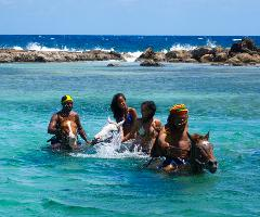 Jamaica Zipline and Horseback Ride n Swim Adventure Tour from Ocho Rios