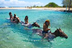 Irie Blue Hole & Horseback Ride n Swim Adventure Tour from Ocho Rios