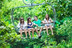 Dunn's River Climb and Ziplining Adventure from Ocho Rios