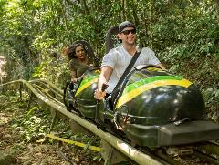 Jamaica Bobsled & Dunn's River Falls Adventure Tour from Kingston