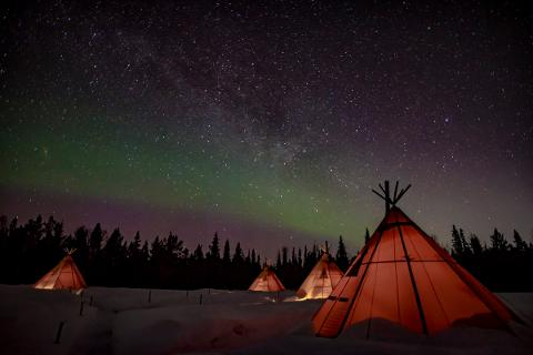 New Years special - Northern Lights & wildlife