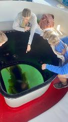 Glass Bottom Boat Ecotour