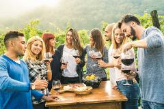 Full Day Wine Tour
