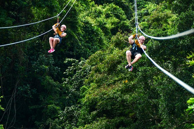 Canopy Zipline
